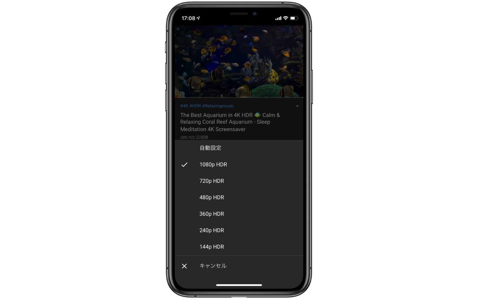 1080p-HDR-iphone11.jpg