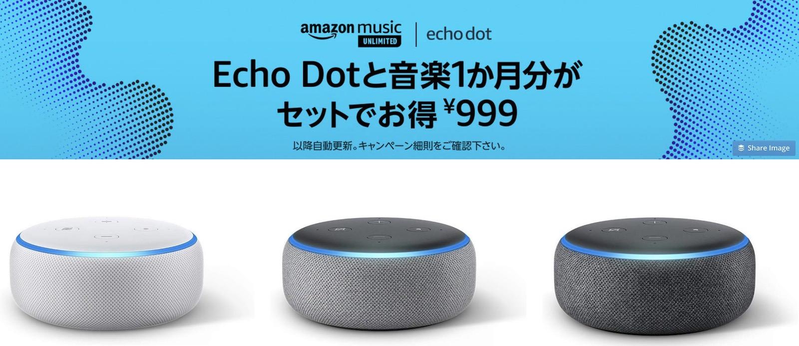 Amazon Echo Camapgin