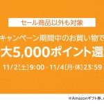 Amazon-Timesale-pointback-campaign-201911.jpg