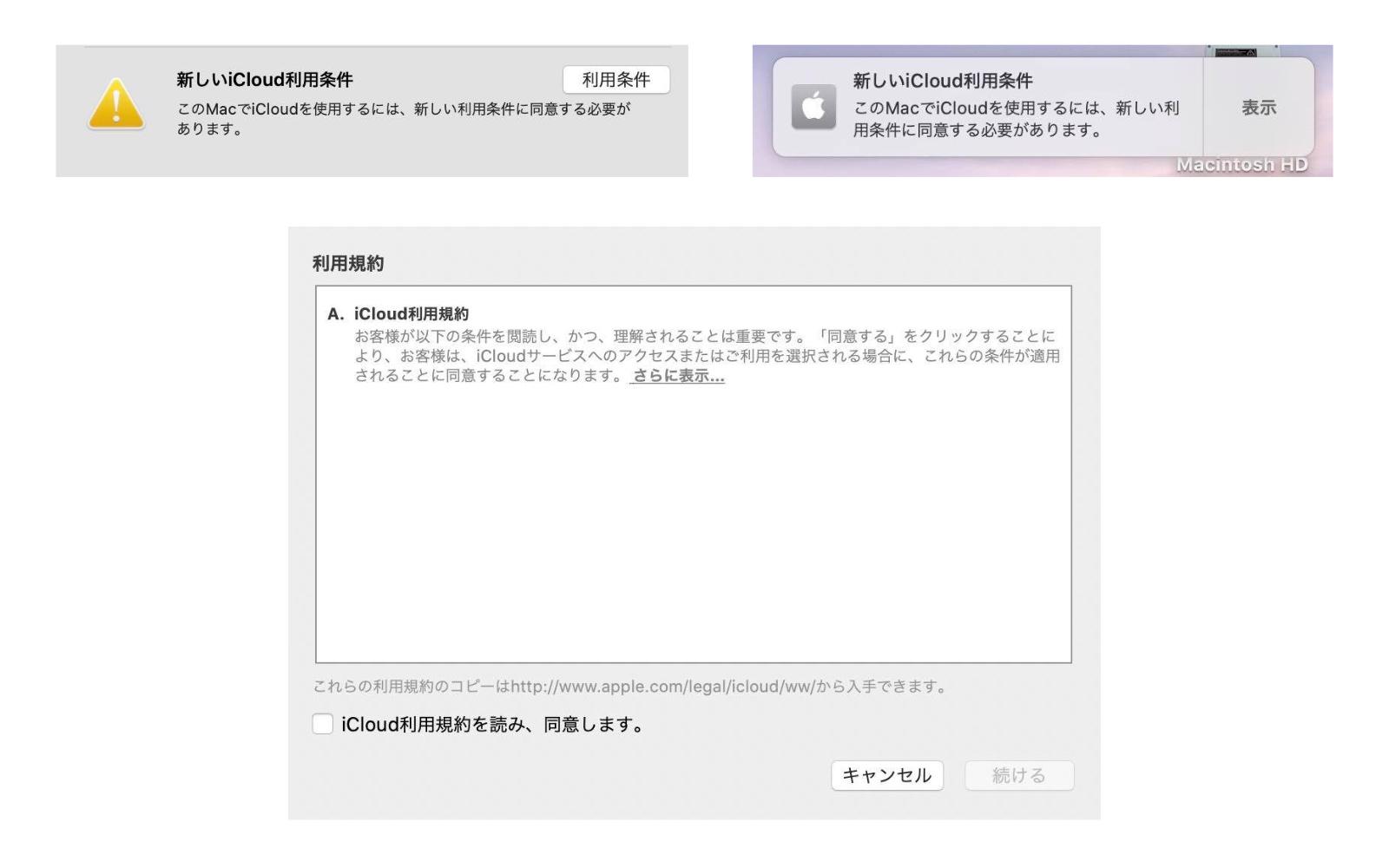ICloud Error message