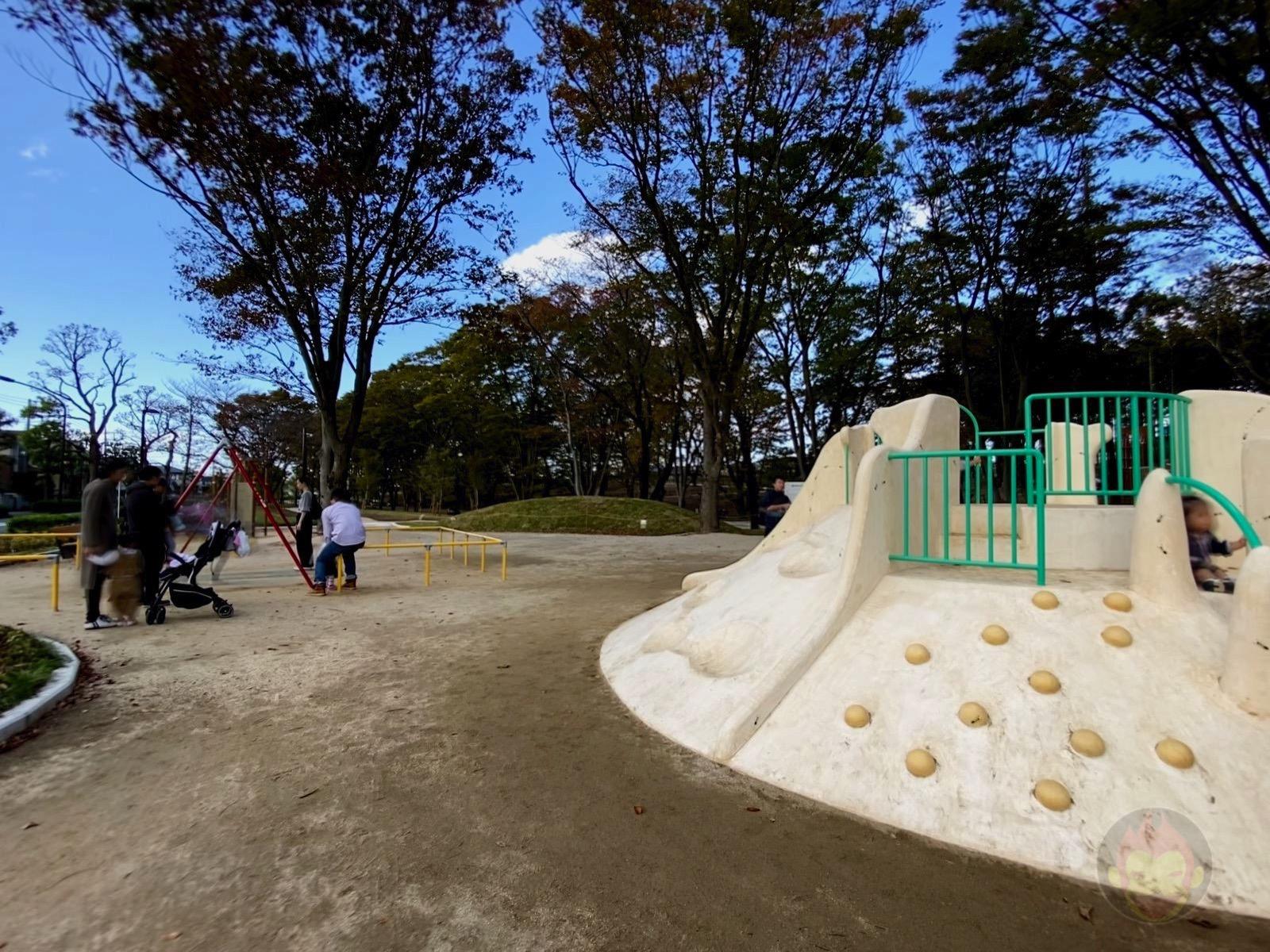 Tsuruma Park Minamimachid Grandberry Pak 05