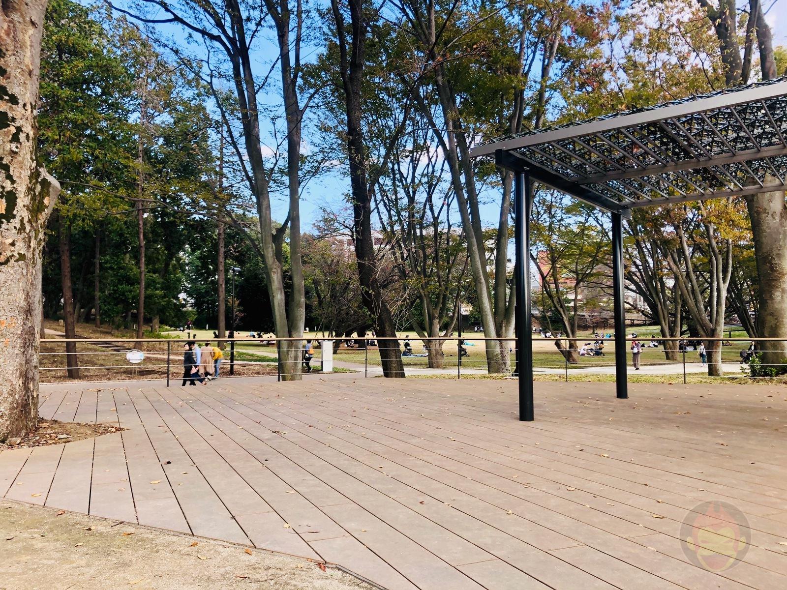 Tsuruma Park Minamimachid Grandberry Pak 10