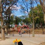 Tsuruma-Park-Minamimachid-Grandberry-Pak-11.jpeg
