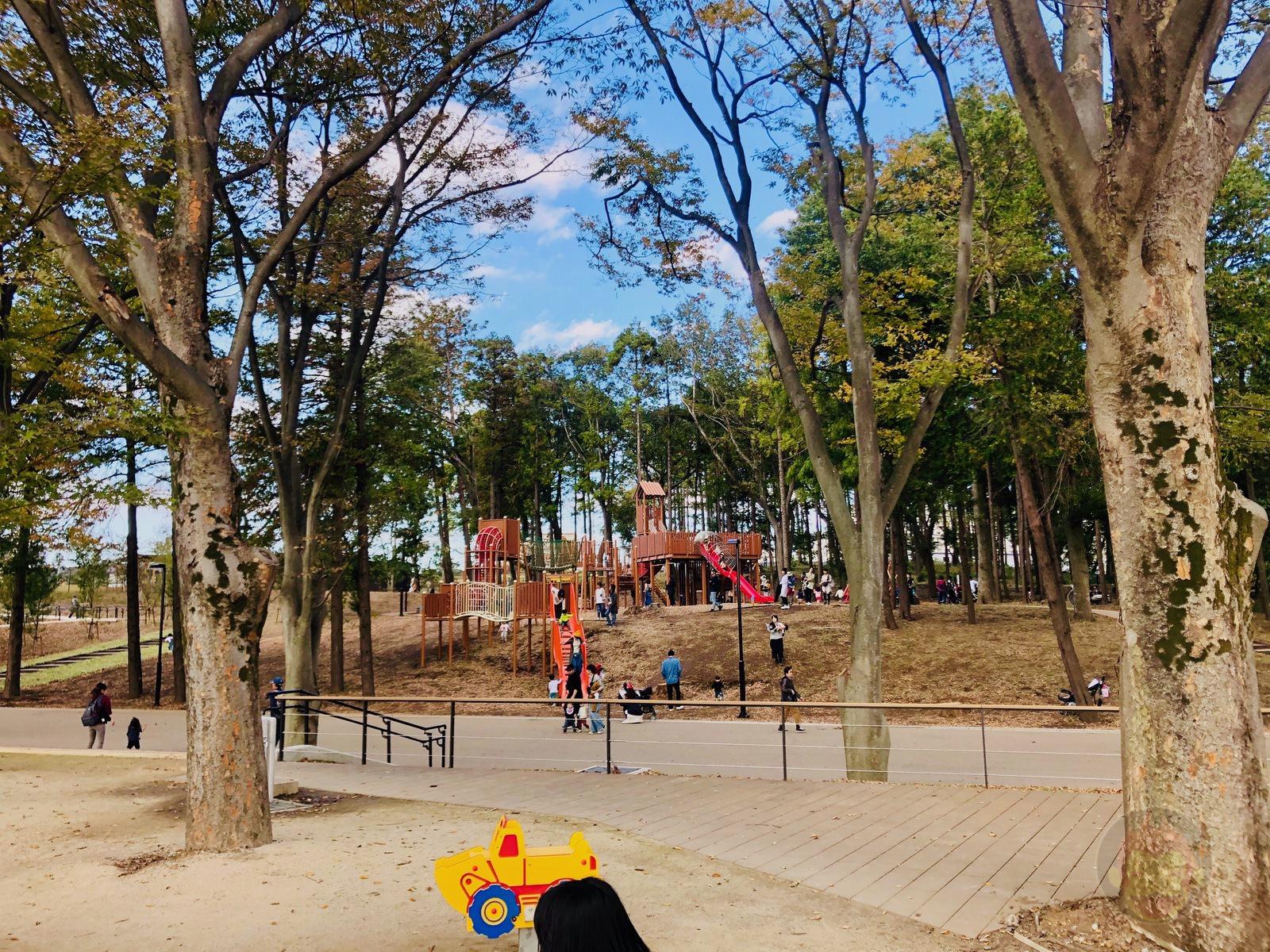Tsuruma Park Minamimachid Grandberry Pak 11