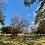 Tsuruma-Park-Minamimachid-Grandberry-Pak-12.jpeg