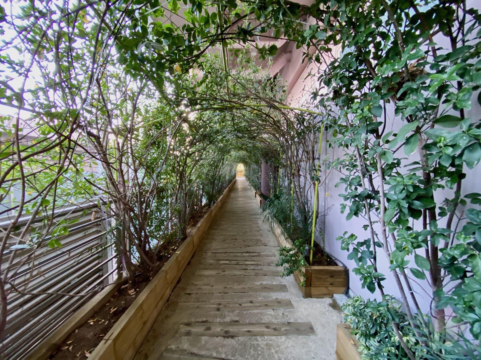 Hoshino Resonale Atami Tree House 01