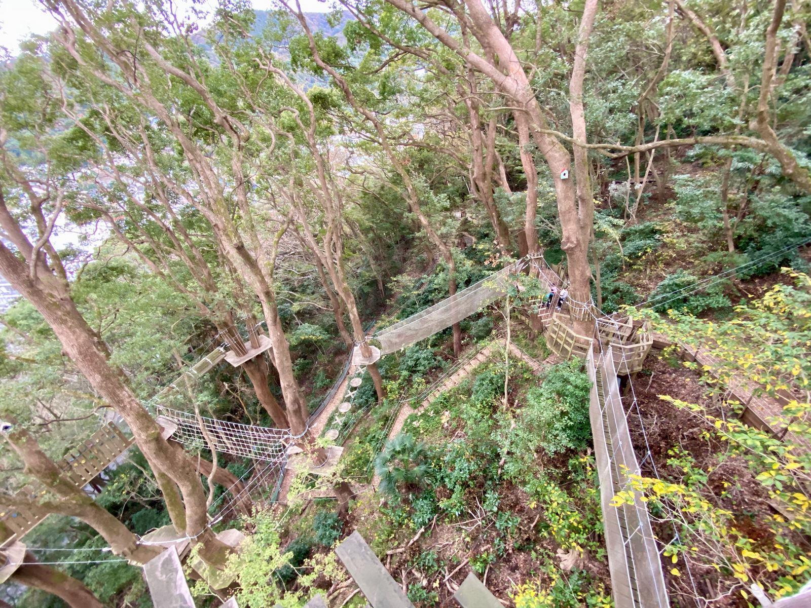Hoshino Resonale Atami Tree House 36