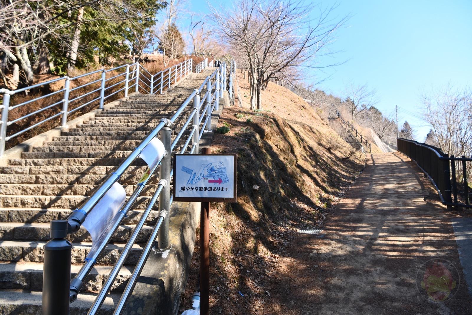 Yamanashi Arakurayamasangen Park Chureito JTC21 17