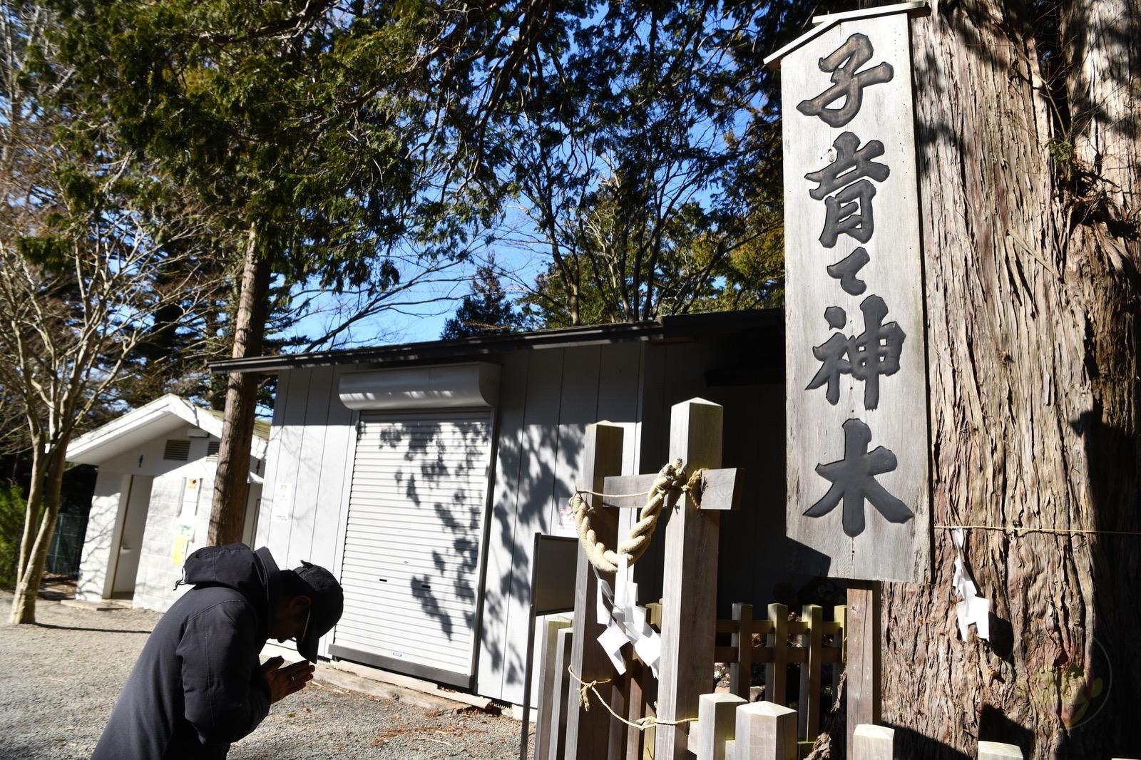 Yamanashi Arakurayamasangen Park Chureito JTC21 52