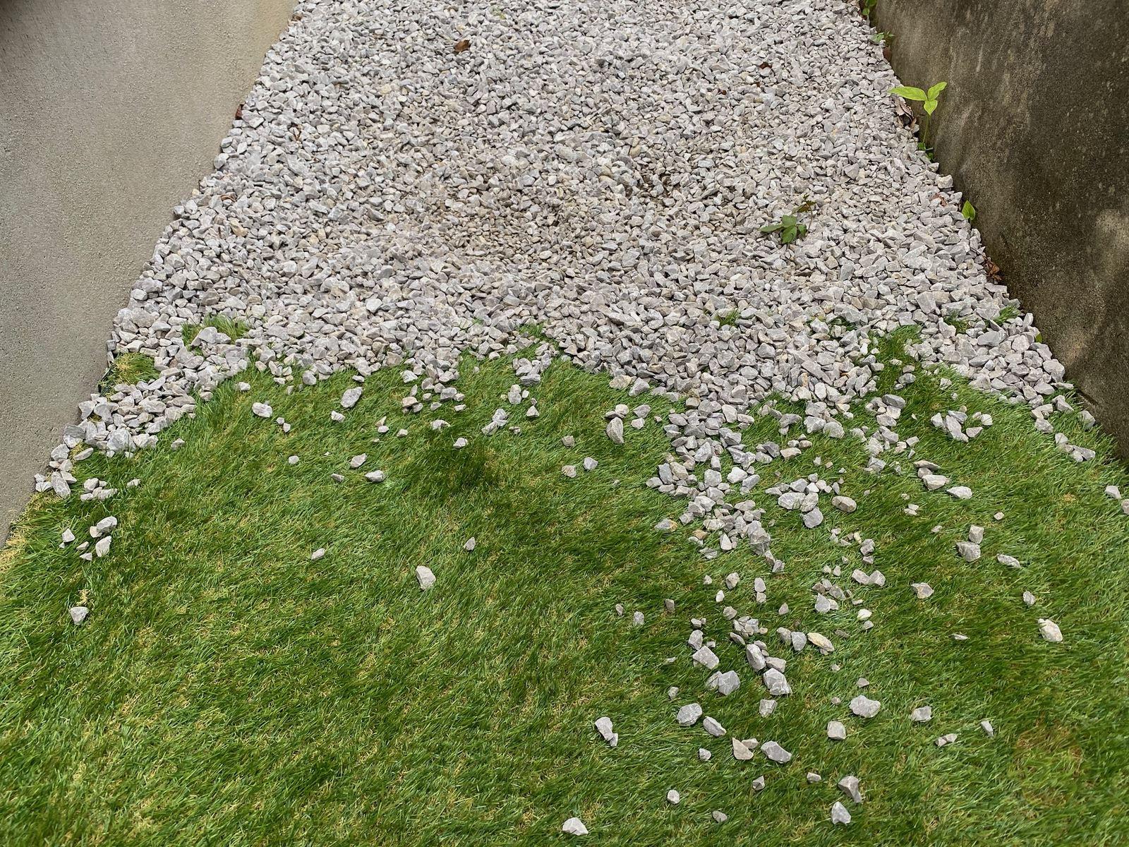 Artificial-lawn-in-backyard-review-17.jpeg