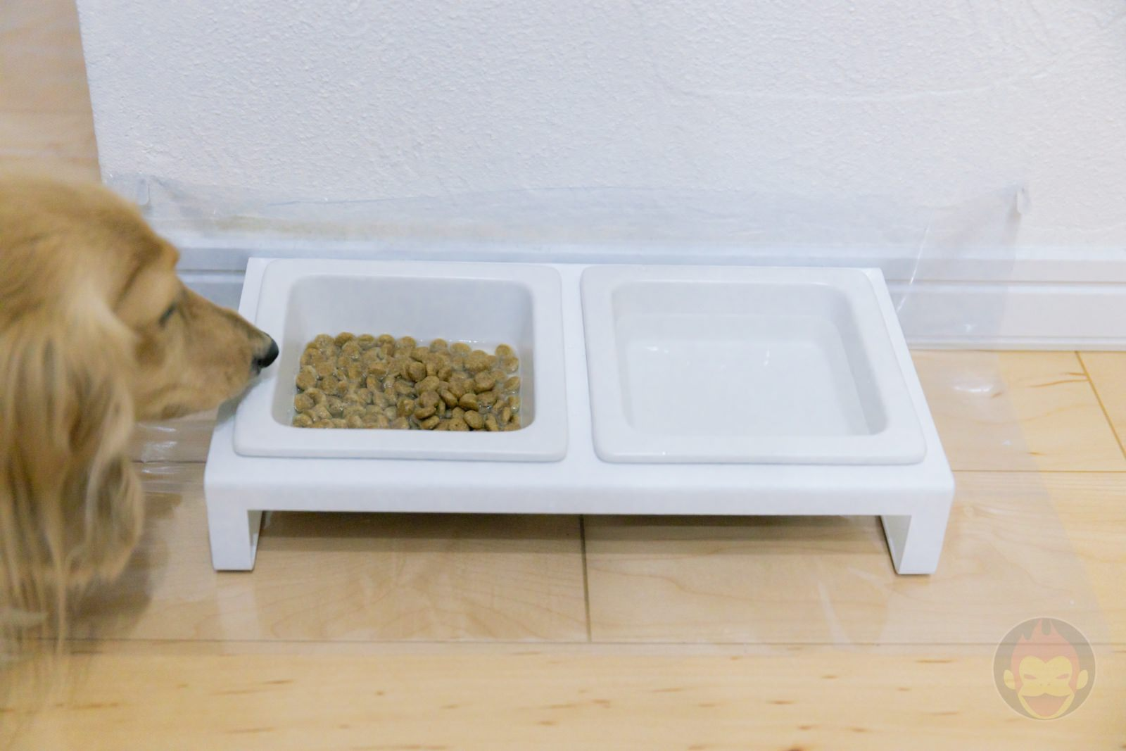 TOWER Pet food bowl stand set 10