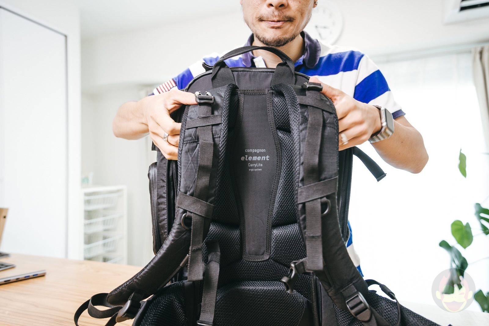 Compagnon element bacpack review 23