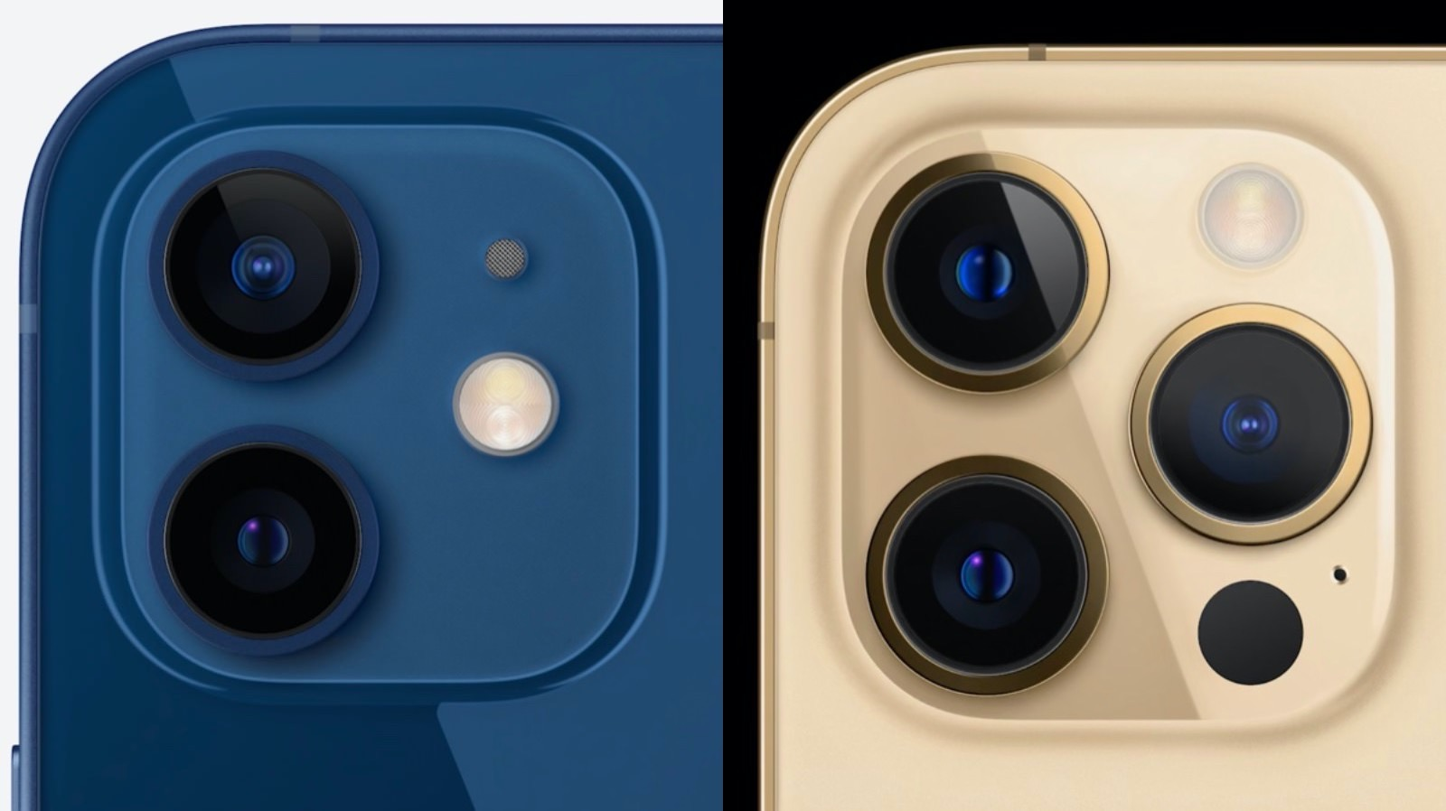 Iphone12 and 12pro camera comparison