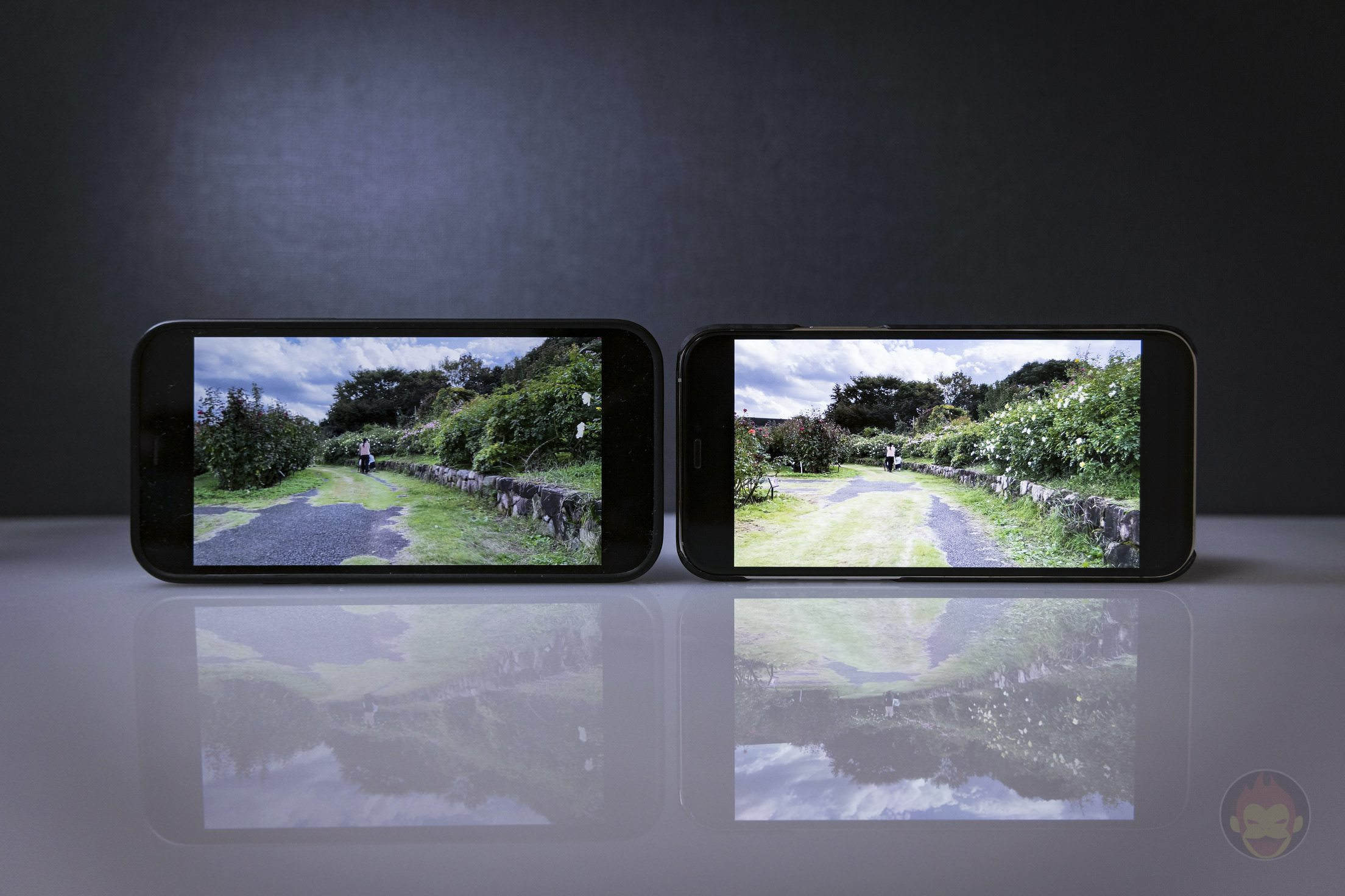IPhone 12 Pro HDR Dolby Vision Comparison 01
