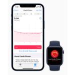 Apple_iphone12_health-cardiofitness-high_12142020.jpg