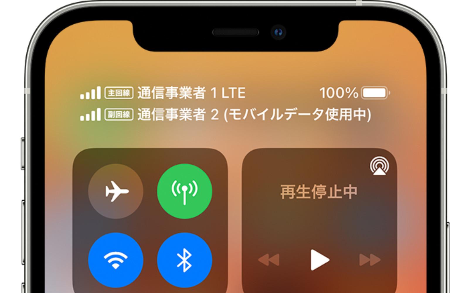 Dual SIM on iPhone