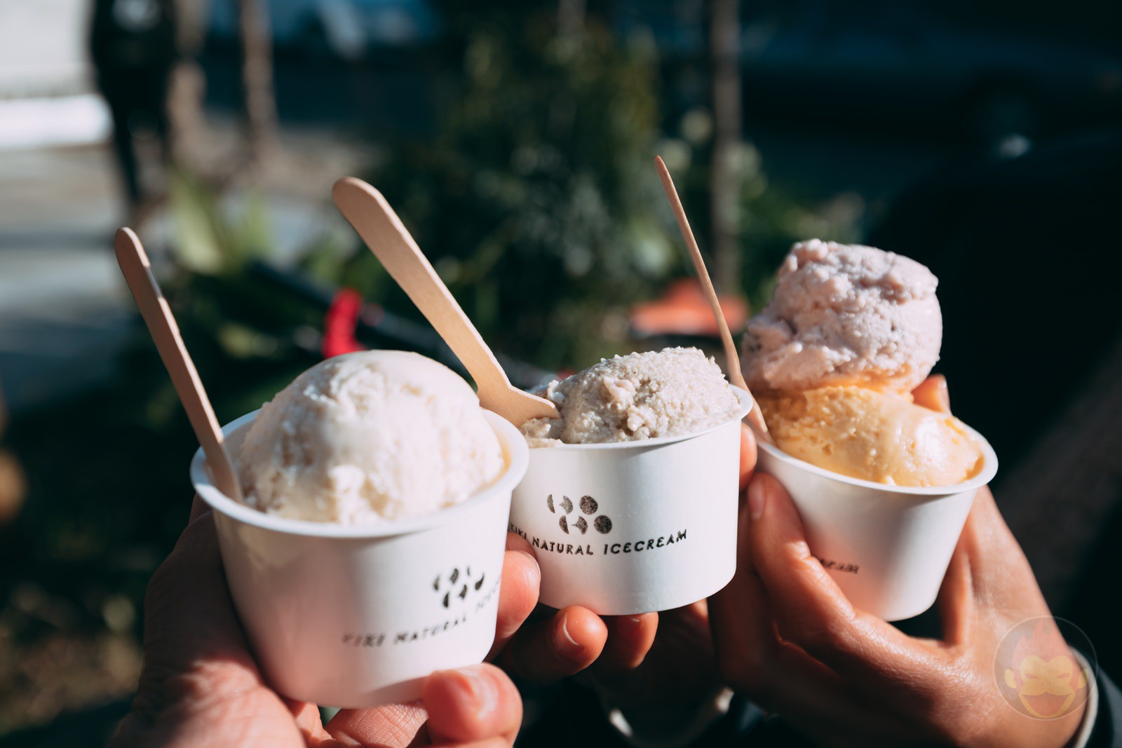 Mikotoya Ice Cream Crowd Funding 11