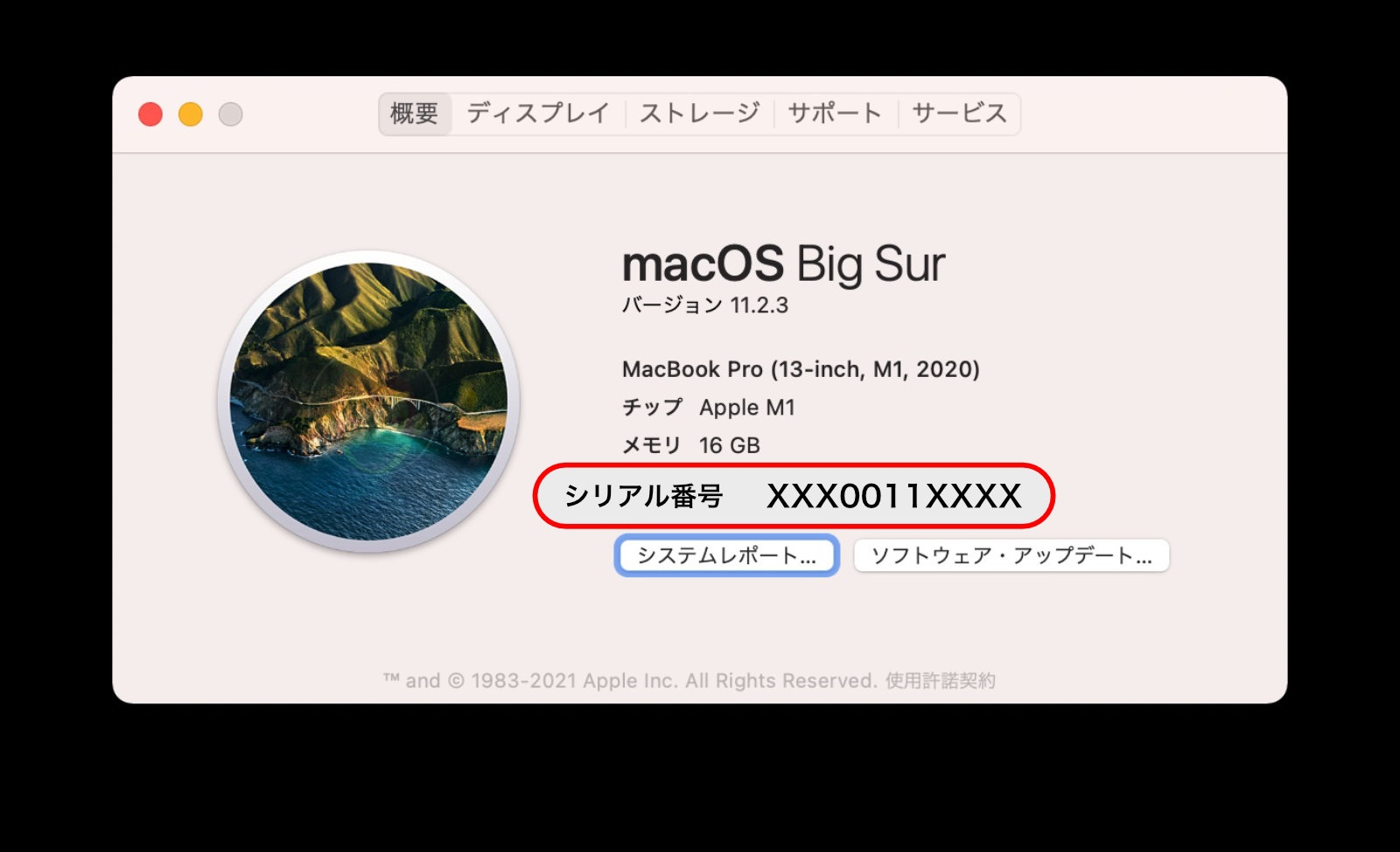 MacOS Big Sur System Information