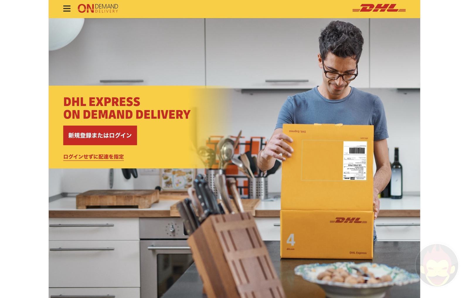 DHL shipment options 05