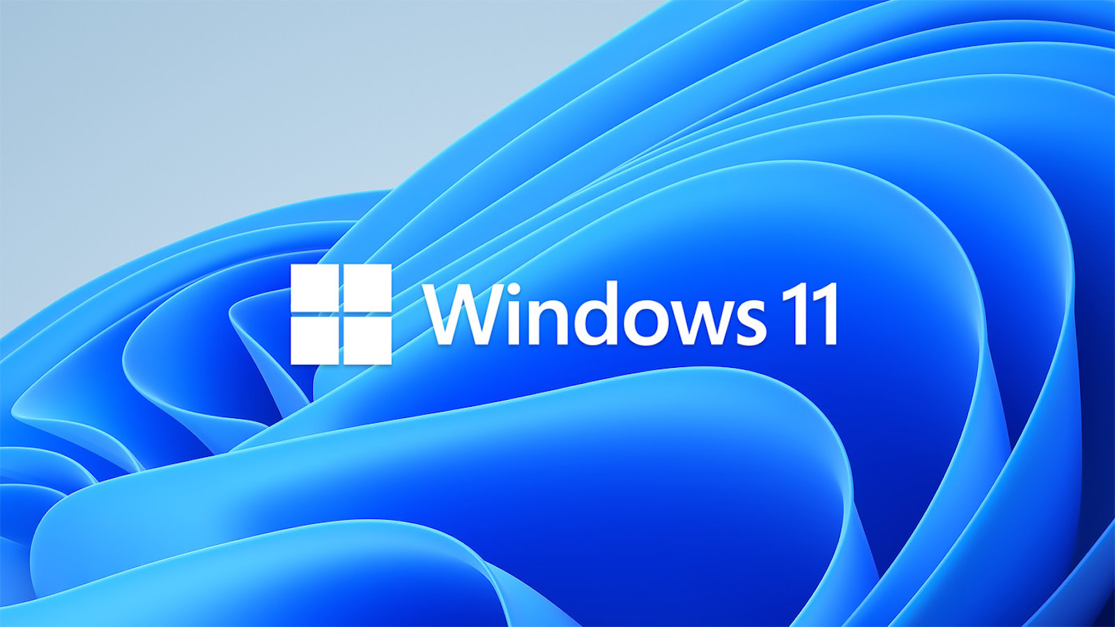 Windwos 11 Microsoft official