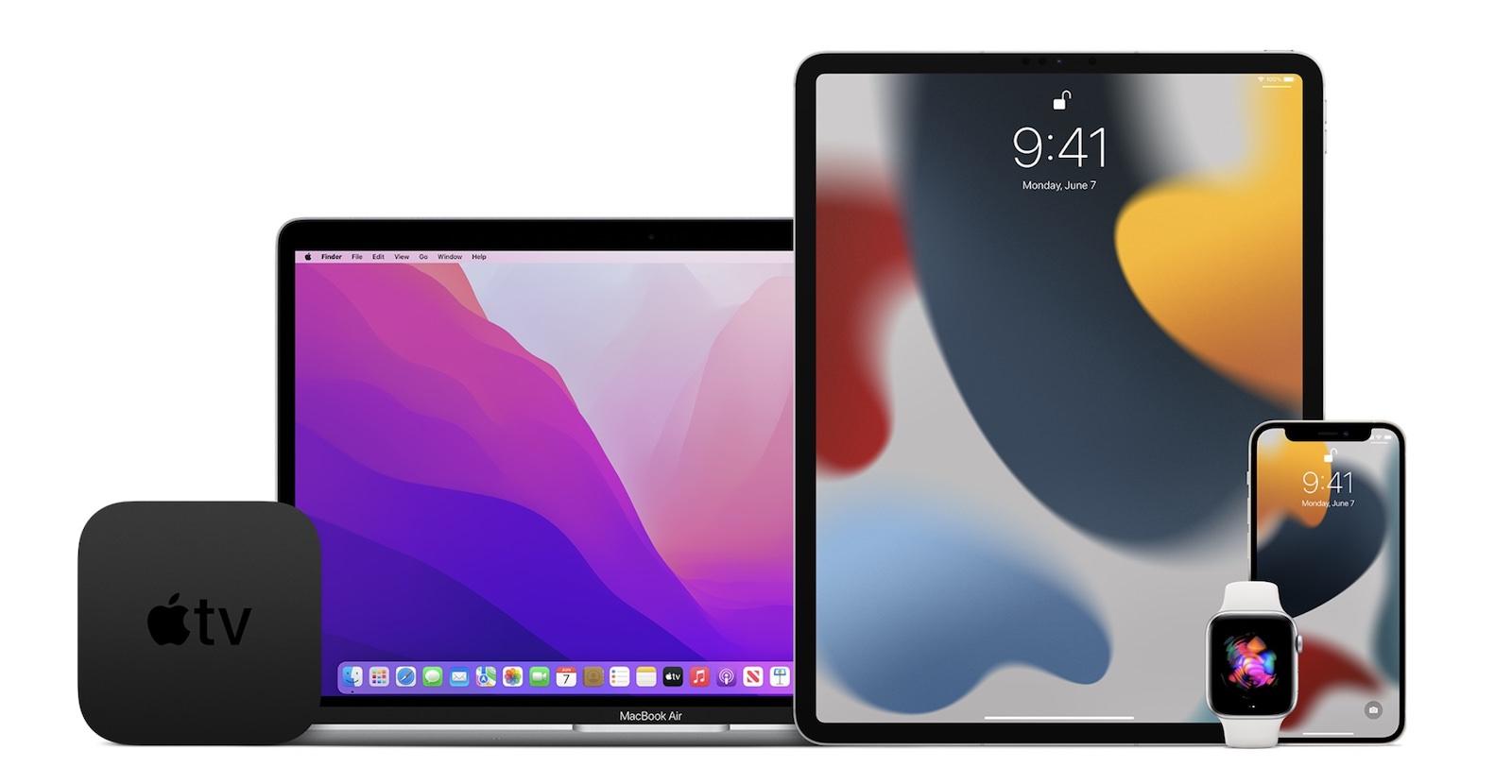 2021 Appe OS Public Beta Program